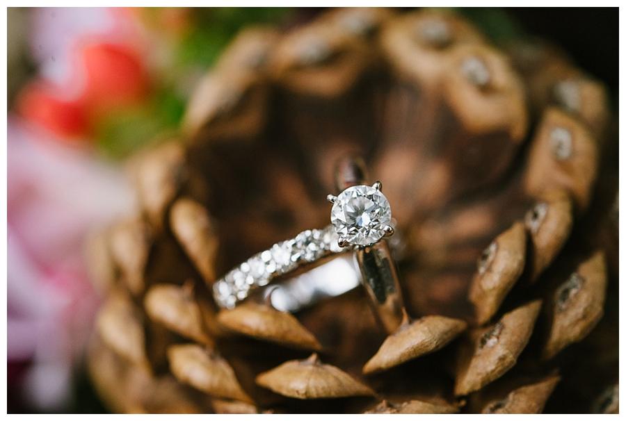 An Enchanting Evening Wedding_0001